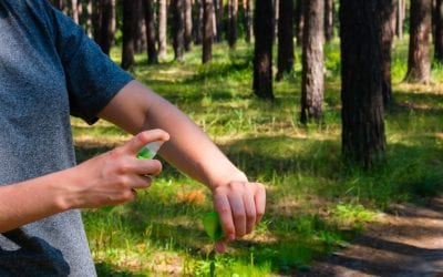 5 Ways to Keep Mosquitoes Off Your Property